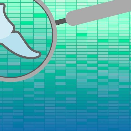Collecting MySQL statistics and metrics | Datadog