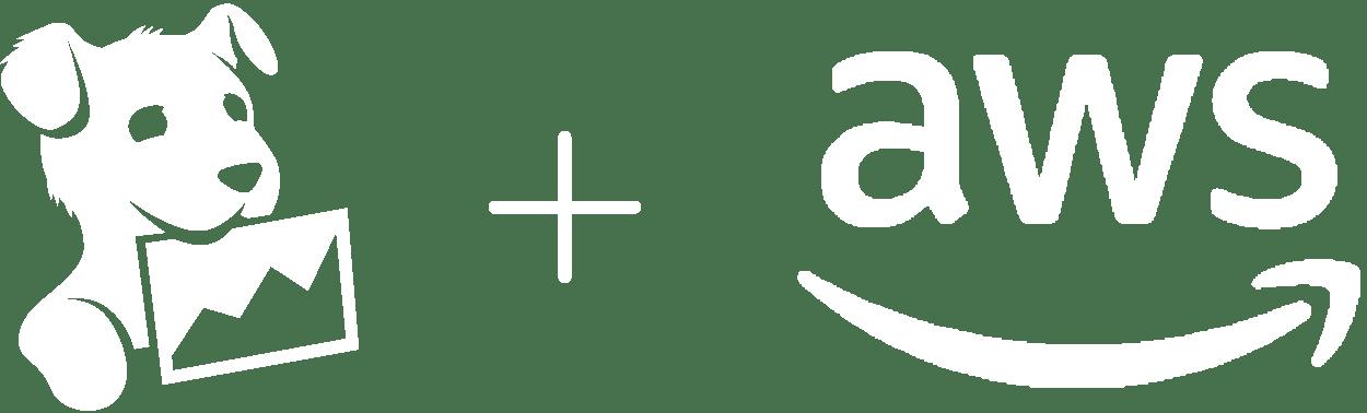 partner/dd-aws.png